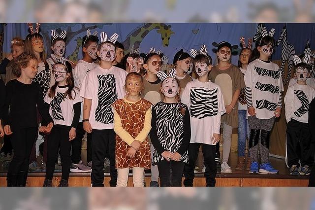 Bei den Zebras und Löwen