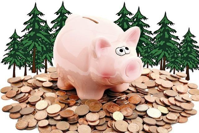 Wald ist keine sichere Bank mehr