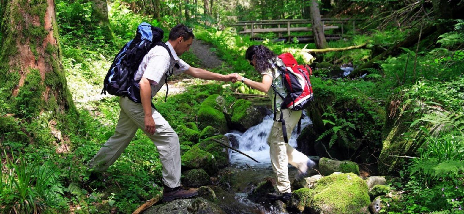 Wandern ist nur eine von vielen  Möglichkeiten, sich im Schwarzwald zu bewegen.  | Foto: dpa/Schwarzwaldverein (2)