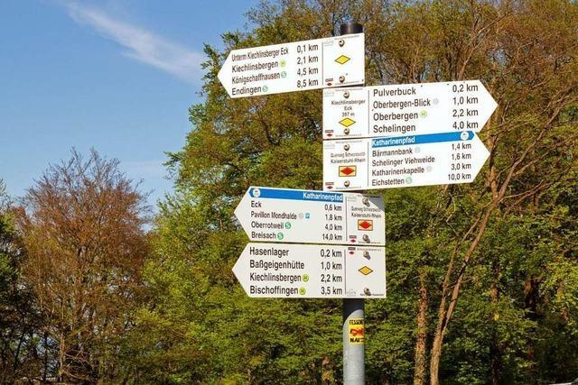 Reform des Schwarzwaldvereins – der Weg ist das Ziel