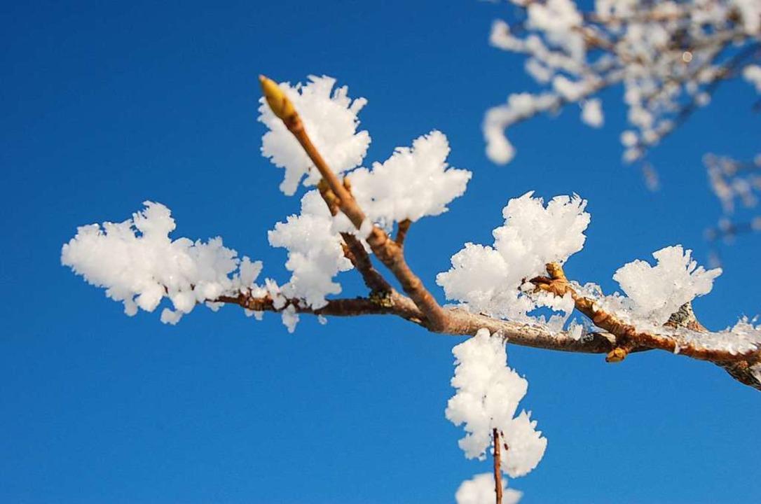 Echter Schnee – so soll es im Film nachher auch aussehen.  | Foto: Kathrin Blum