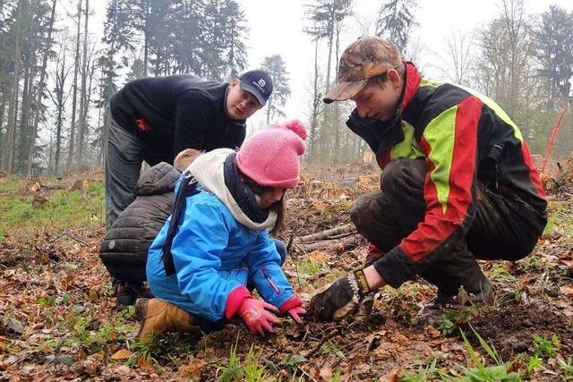 Ehrenkircher Schüler pflanzen Bäume für den Klimaschutz