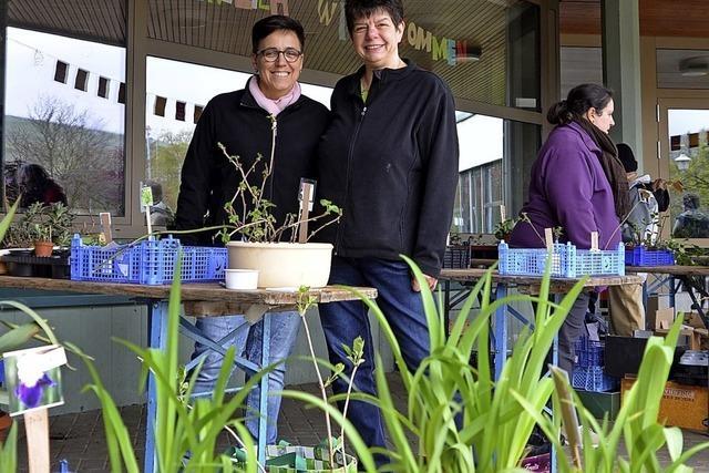 Erster Pflanzenmarkt lockt viele Besucher an