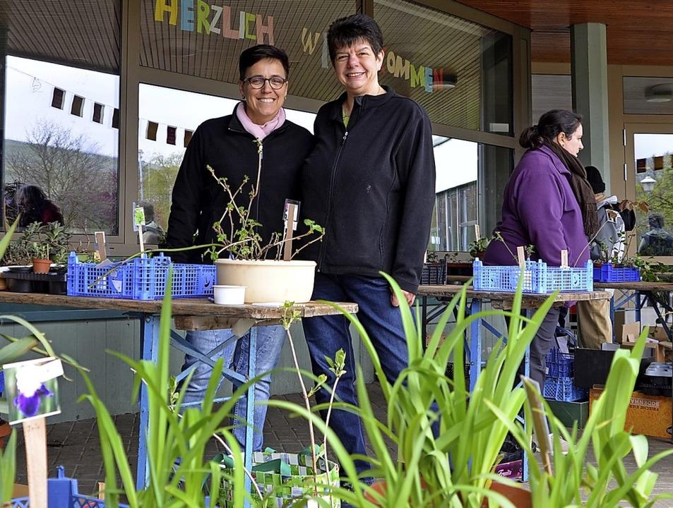 Verschiedene Zier- und Nutzpflanzen ko... bei der Jengerschule gekauft werden.   | Foto: Michael Maier