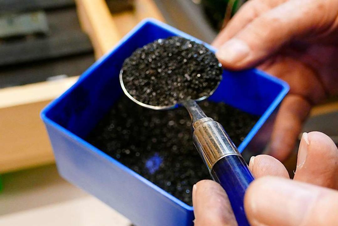 Damit alles so realistisch wie möglich...verwendet der Modellbauer echte Kohle.  | Foto: Simona Eftimova