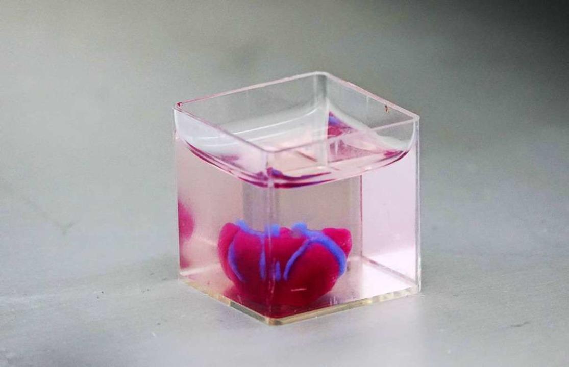 Ein 3D-Drucker druckt ein Herz mit men...sentation an der Universität Tel Aviv.  | Foto: dpa