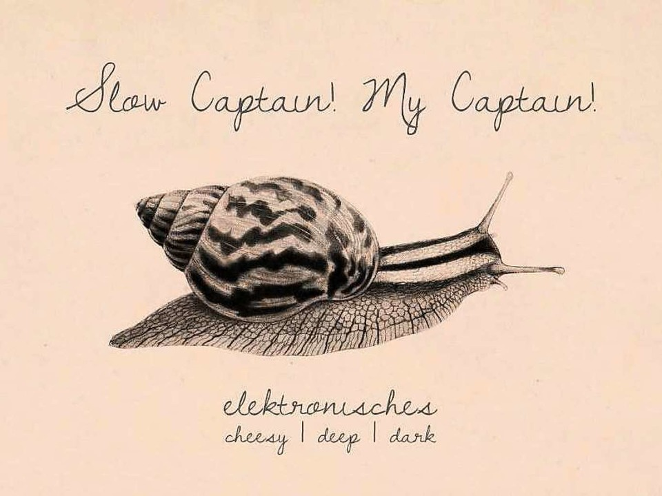 Captain Cook vom Ahoii-Club legt am Freitag Downbeat im Räng auf.  | Foto: Promo