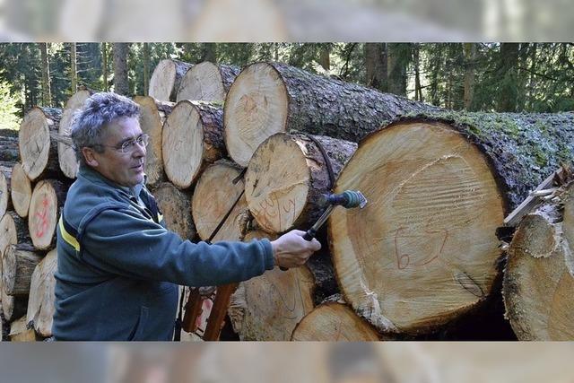 Häusern bleibt dem Forstamt treu