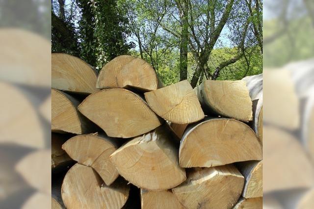 Vom Wald und seinem Wert