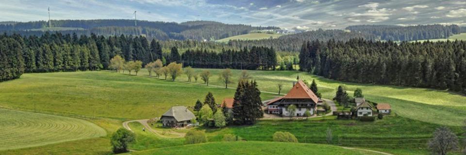 Über 100 Ausflugstipps für einen schönen Frühlingstag