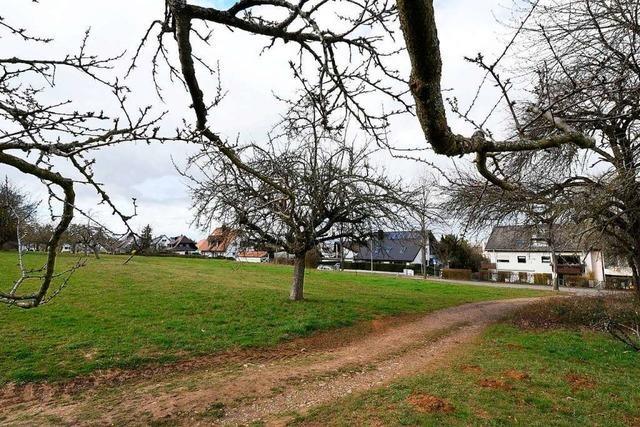 Kein Schnellverfahren für Einfachwohnungen am Zwiegeracker in St. Georgen