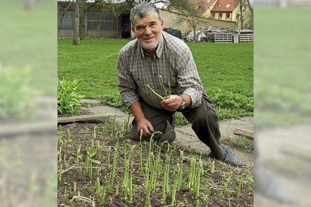 Grüner Spargel wächst auch auf der der rauen Baar