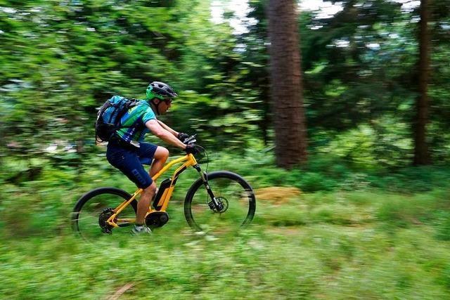 Mountainbiker verletzt sich schwer