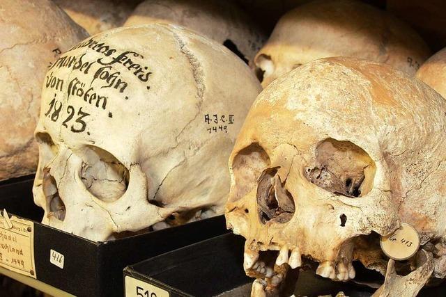 Schädel aus Sammlung der Uni-Freiburg an Australien übergeben