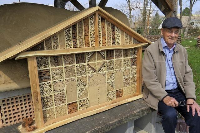 Die Bienen wohnen im Luxus