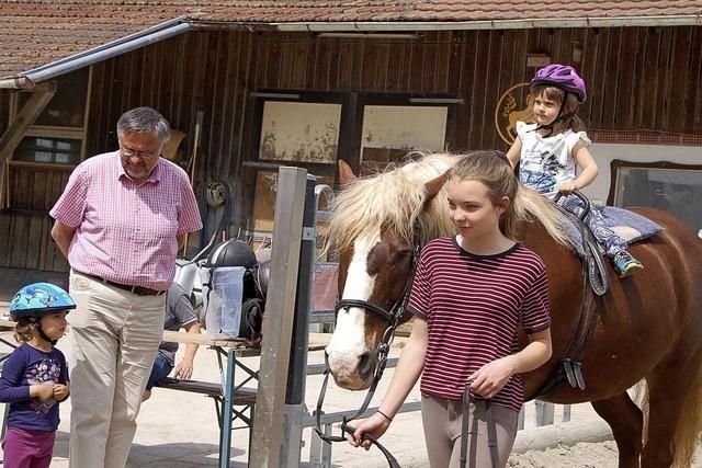 Auf dem Rücken der Ponys