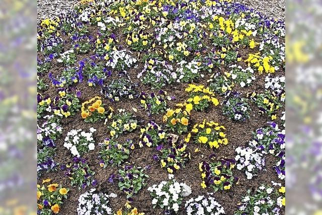 Oster- und Frühjahrsgrüße