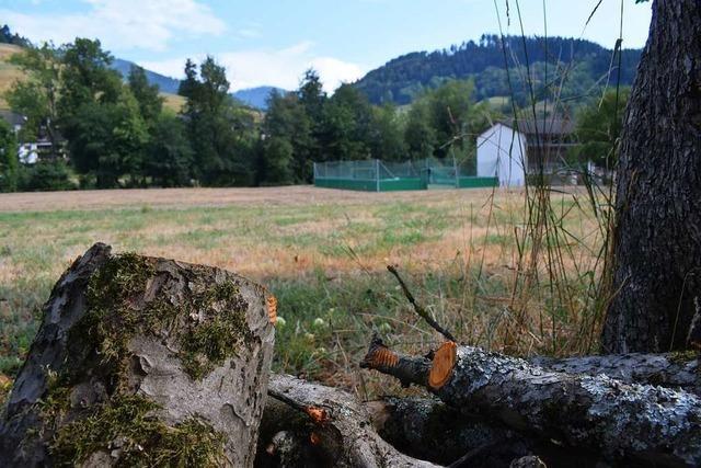 Münstertal spart im Neubaugebiet bei der Erschließung