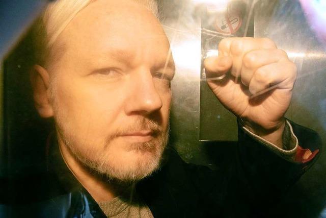 Wikileaks-Gründer Assange zu 50 Wochen Gefängnis verurteilt