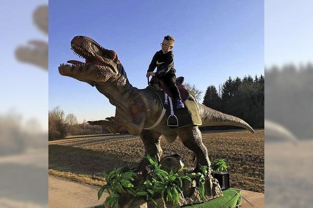 Bewegliche Reproduktionen von Stegosaurus und T-Rex in der Sulzberghalle