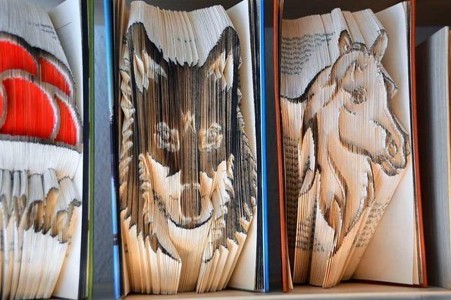 Dieser Stegener verwandelt alte Bücher in kleine Kunstwerke