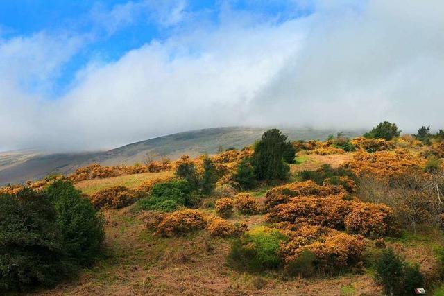 Die Isle of Man ist nicht nur ein Steuer-, sondern auch ein Wanderparadies