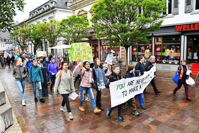 Handeln ohne weiteres Zögern fordern die Teilnehmer des Klimastreiks in Lörrach