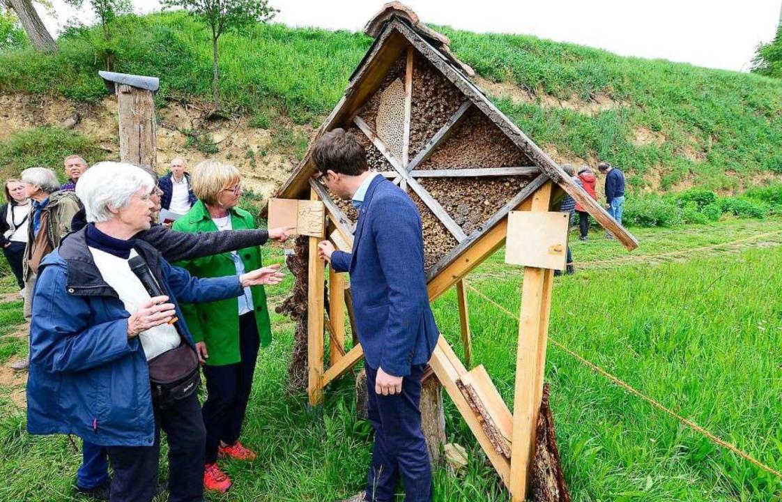 Im Wildbienen-Garten in Opfingen gibt es auch zahlreiche Insektenhäuser.  | Foto: Ingo Schneider