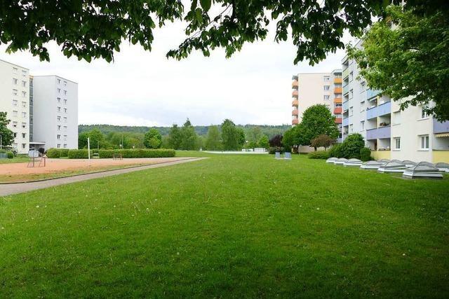 Nur geringerer Teil des Grüns im Quartier Römerstraße muss Neubauten weichen