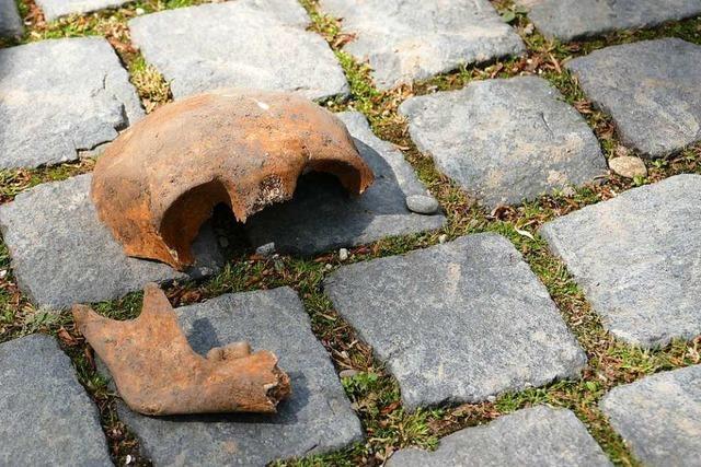 Schädel auf dem Rathausplatz in Bad Krozingen gefunden