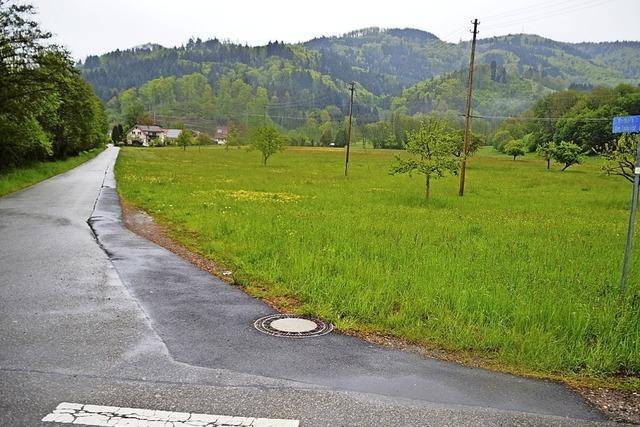 Raitbacher wollen Neubaugebiet am Bahnhof