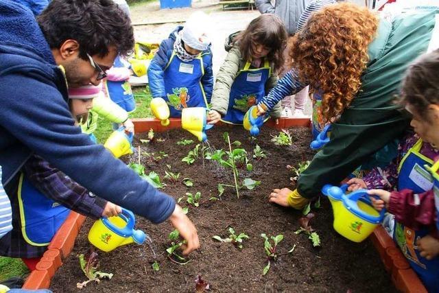 Umkircher Kindergarten kann nun eigenes Gemüse anbauen – dank der Edeka-Stiftung