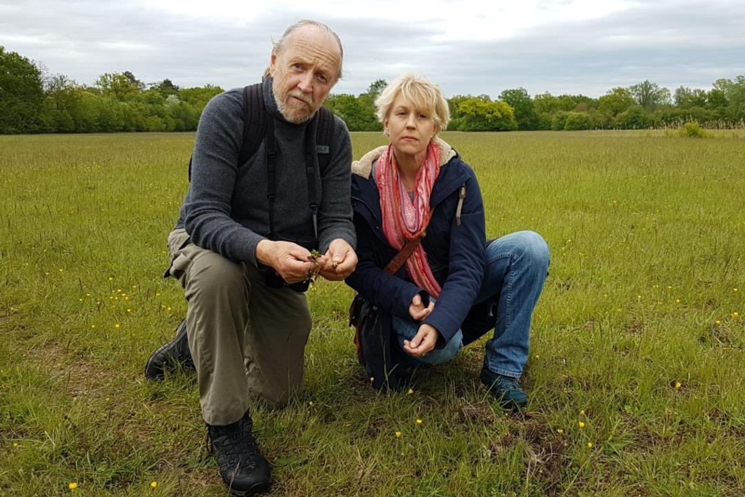 Dietmar und Silke Keil begutachten das...e Orchideenknollen ausgegraben wurden.  | Foto: Karl Kovacs