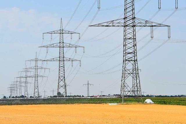 Neue Stromleitung durch den Landkreis – Betreiber lädt zu Gesprächen mit Bürgern