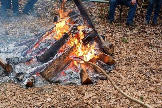 Strenge Auflagen für Selbstwerber im Breisacher Stadtwald
