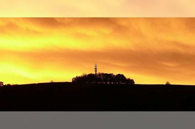 Morgenstimmung über dem Schutterlindenberg