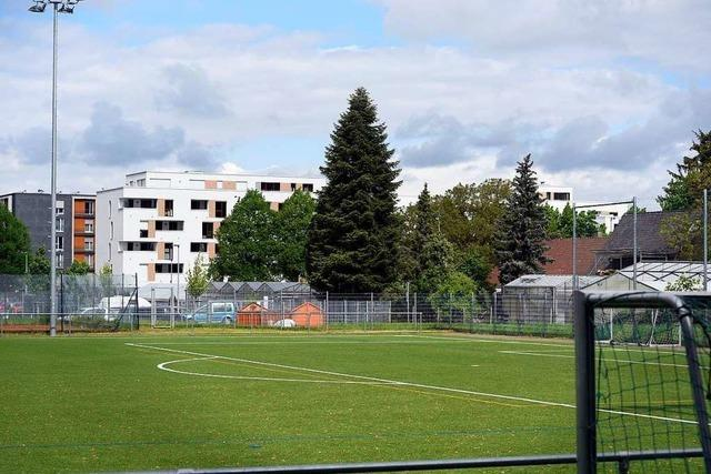 Warum der Umbau der Alemannia-Sportanlagen in Zähringen stockt