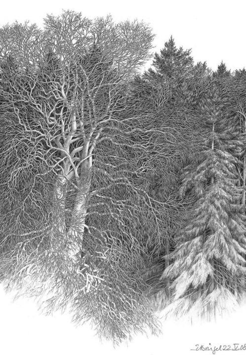 "Eberhard Bürgel, ""Waldrand im März"", 2008  | Foto: Kunstkreis Radbrunnen"