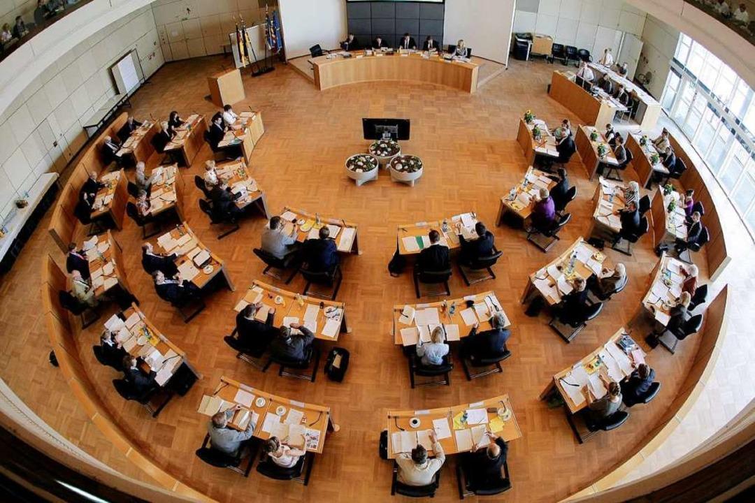Die Kandidaten für den Mannheimer Geme...bertrieben – parteiübergreifend.  | Foto: dpa