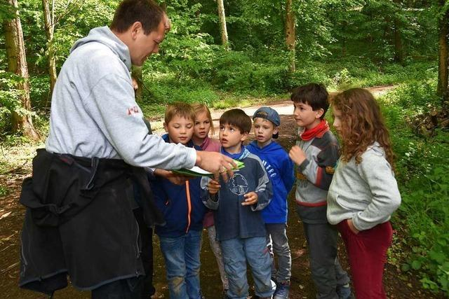 Schwarzwaldverein organisiert Familien-Olympiade in Gundelfinger Wald