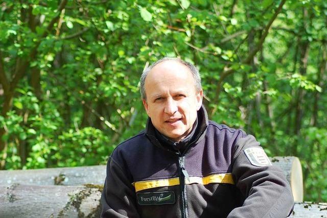 Hans-Georg Pfüller ist der neue Leiter des Forstbezirks Lahr