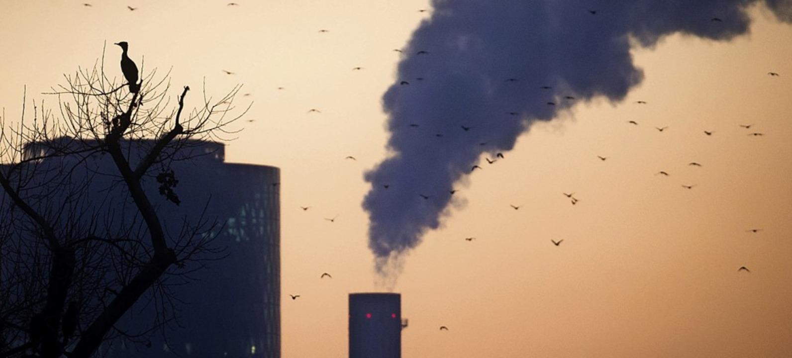 Großindustrielle Betriebe verbrauchen oft viel Energie.  | Foto: Frank Rumpenhorst (dpa)