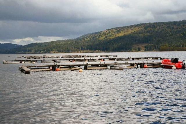 Die Segler auf dem Schluchsee haben Angst um ihre Boote