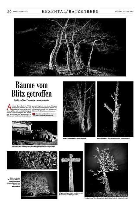 Die preisgekrönte Arbeit der Fotografi...von einem Blitz getroffen worden sind.  | Foto: bz