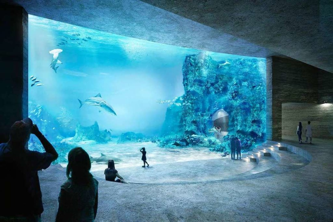 So soll das Ozeanium einmal aussehen – sofern es denn gebaut wird.  | Foto: Zoo basel