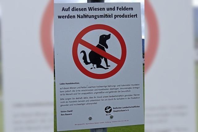 Hundekot als großes Problem