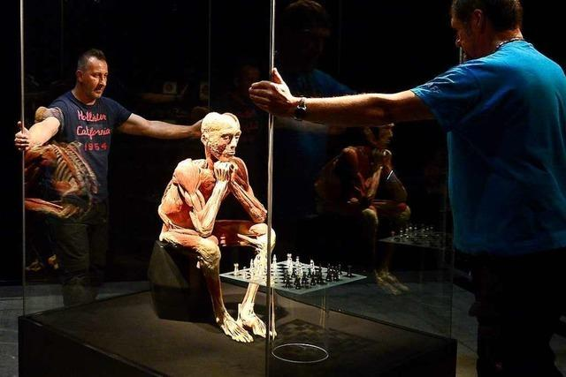 Am Freitag startet die Körperwelten-Ausstellung in der Freiburger Messe