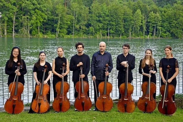Schlosskonzert im Rittersaal von Schloss Beuggen in Rheinfelden mit Ensemble Cellissimo