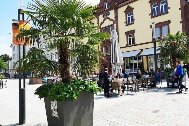 Radunfall zeigt den Konflikt auf dem Offenburger Lindenplatz auf