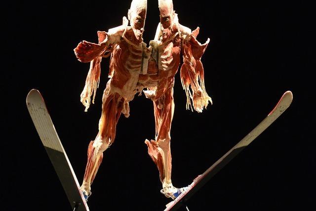 Fotos: Das sind die Highlights der Körperwelten-Ausstellung